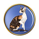Giftshop UK Cornish Rex Katze Anstecker