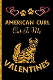 American Curl Is My Valentines: Perfect American Curl Valentine's Notebook Journal , Blank Lined American Curl Notebook Valentine's Gifts for Man ... Valentine's Gift For American Curl Lovers